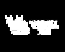 logo_VS