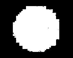 logo_gniady